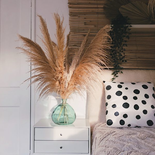 extra fluffy pampas grass, natural dried pampas, tall pampas grass for home decor, pampas in a vase