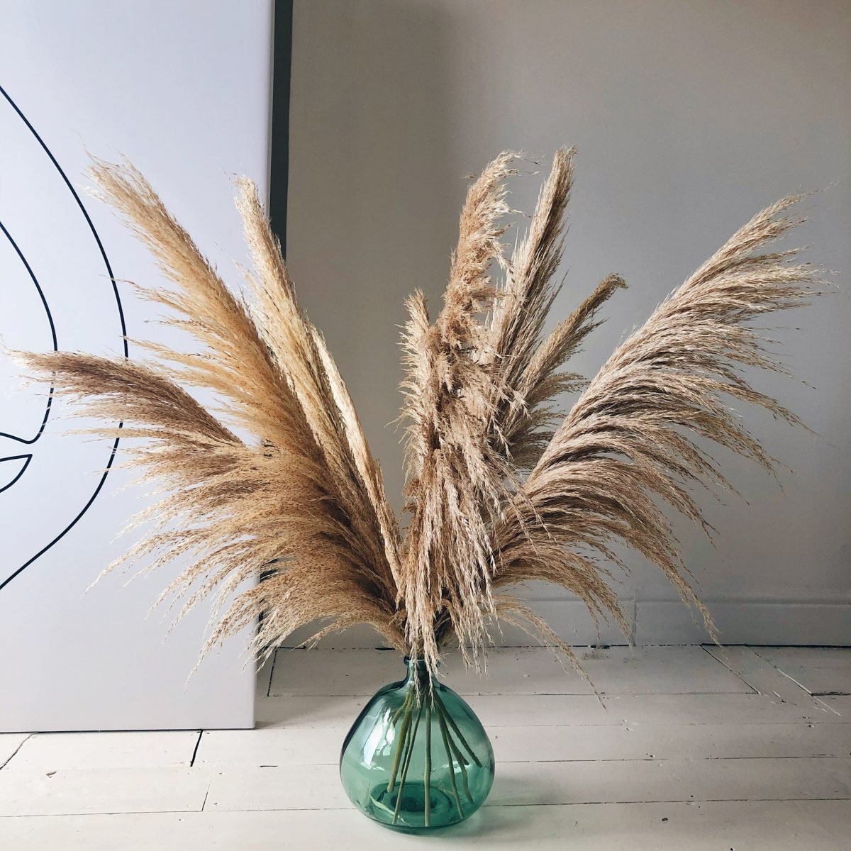extra fluffy pampas grass, long plume pampas, pampas for home decor, natural pampas, dried pampas grass, pampas for home, kiss my pampas